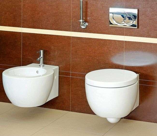 Muszle WC