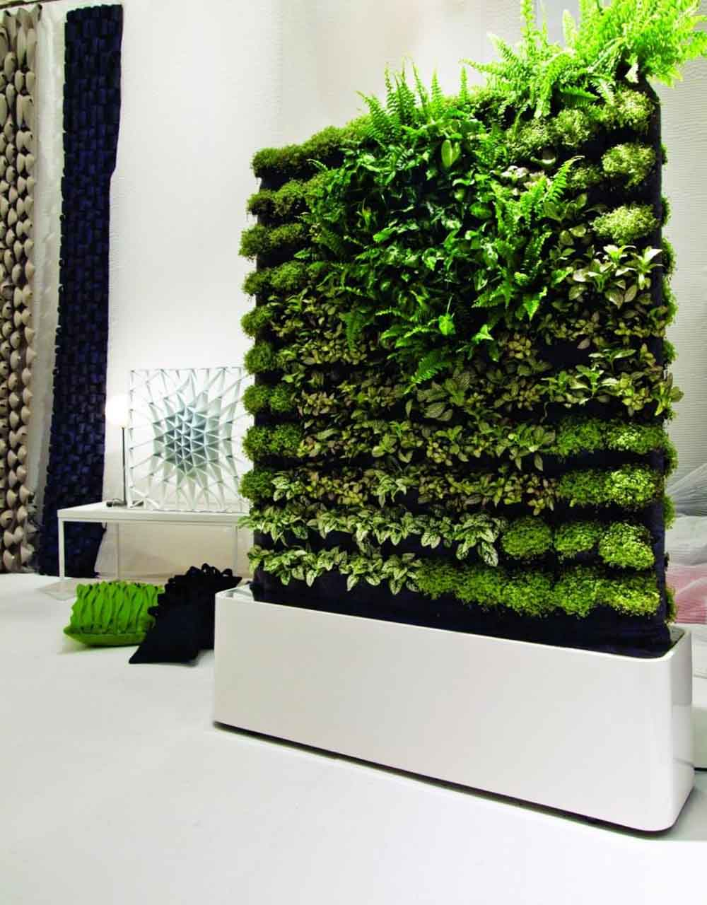 domowy ogród na ścianie