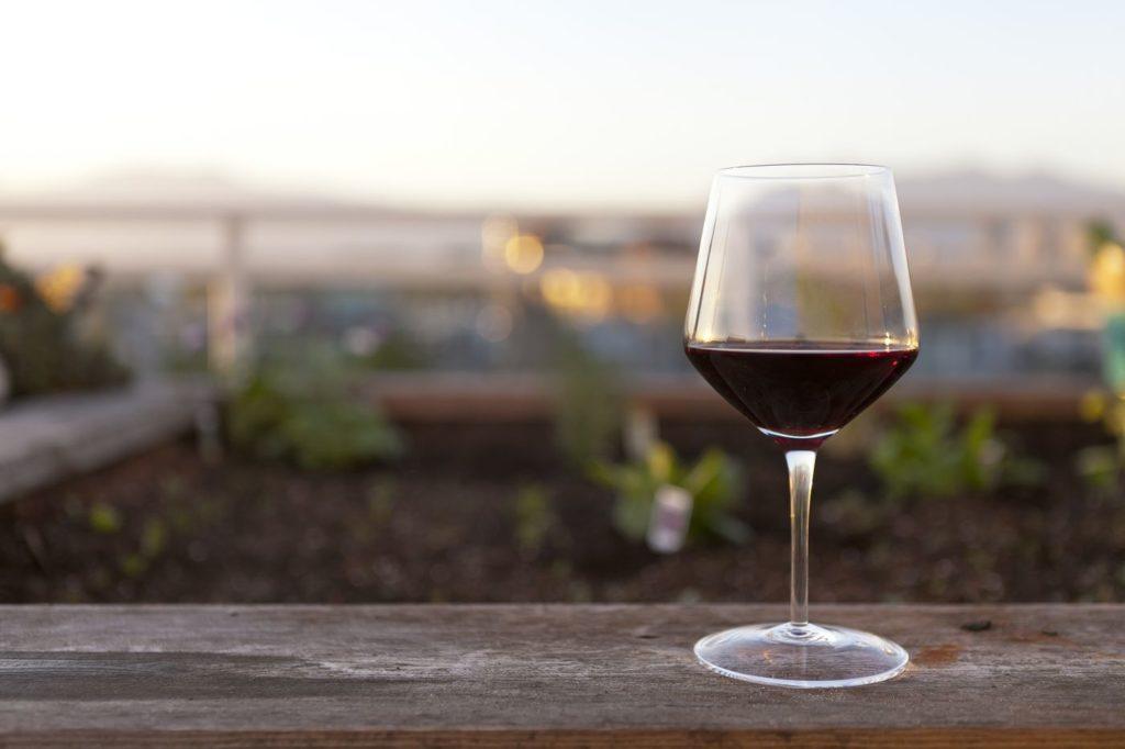 kieliszek wina z winogron
